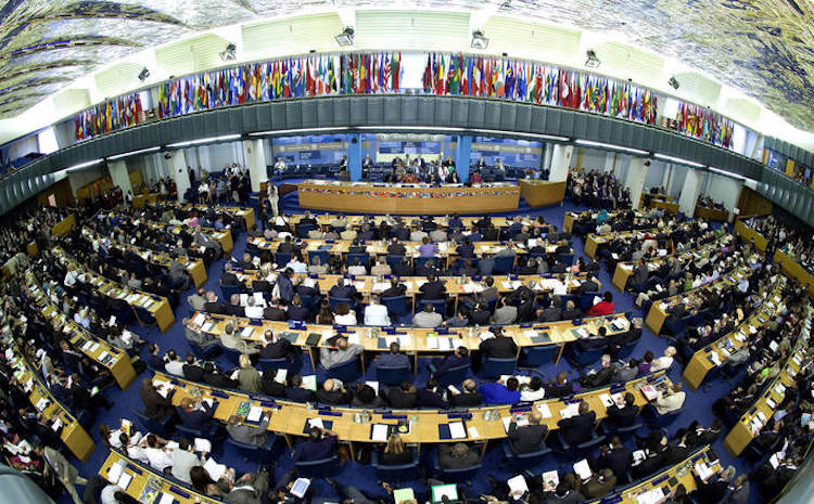 Photo: Election for the agency's top leadership post with a four-year term of office starting on August 2019 will take place at the 41st Session of FAO's Conference. Credit: FAO