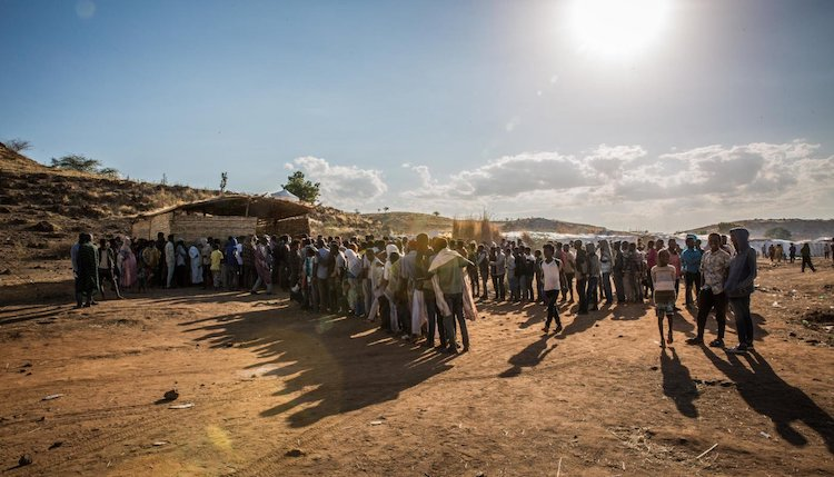 Photo: Long lines of people forced to flee Ethiopia's Tigray region waiting outside the Norwegian Refugee Council (NRC) office in Sudan's Um Rakuba camp. Photo: Ingebjørg Kårstad/NRC